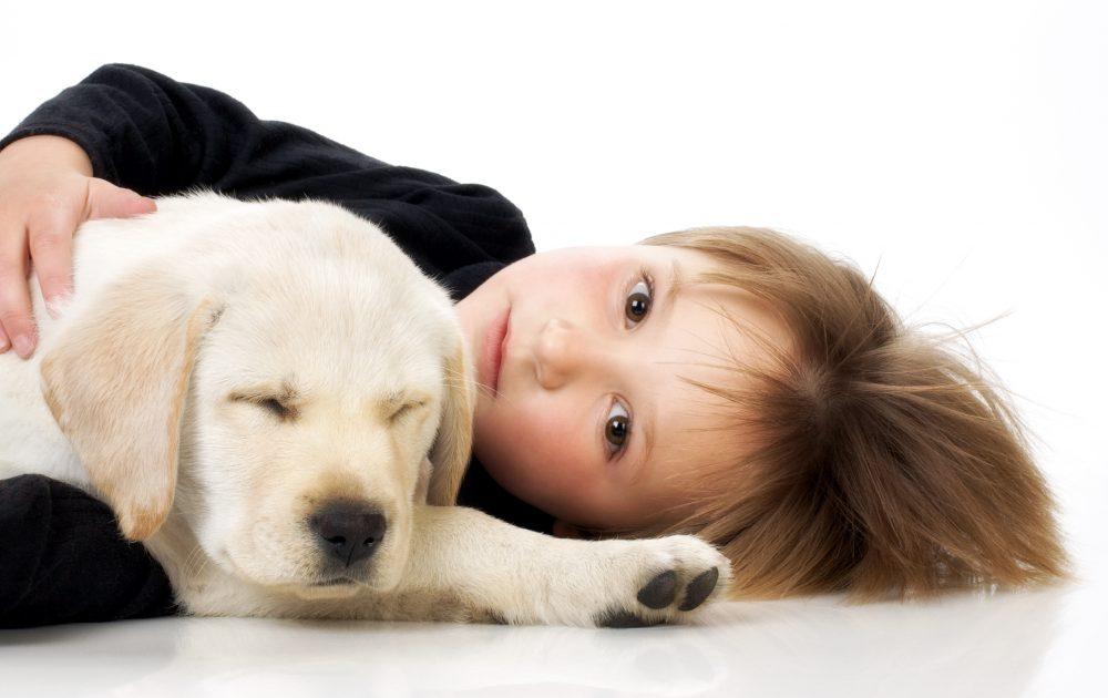Con una mascota tu hijo es mejor persona