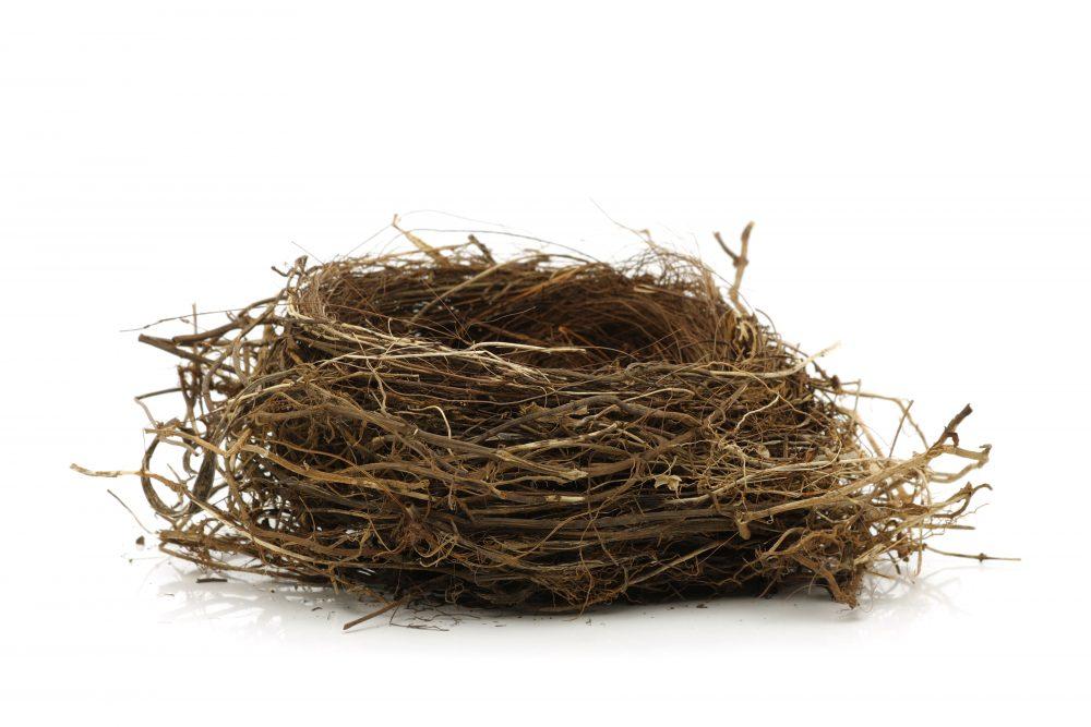 Síndrome del nido vacío, reconocerlo y hacerle frente