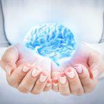 Los mitos sobre el cerebro - ¿Es nuestro cerebro un computador?
