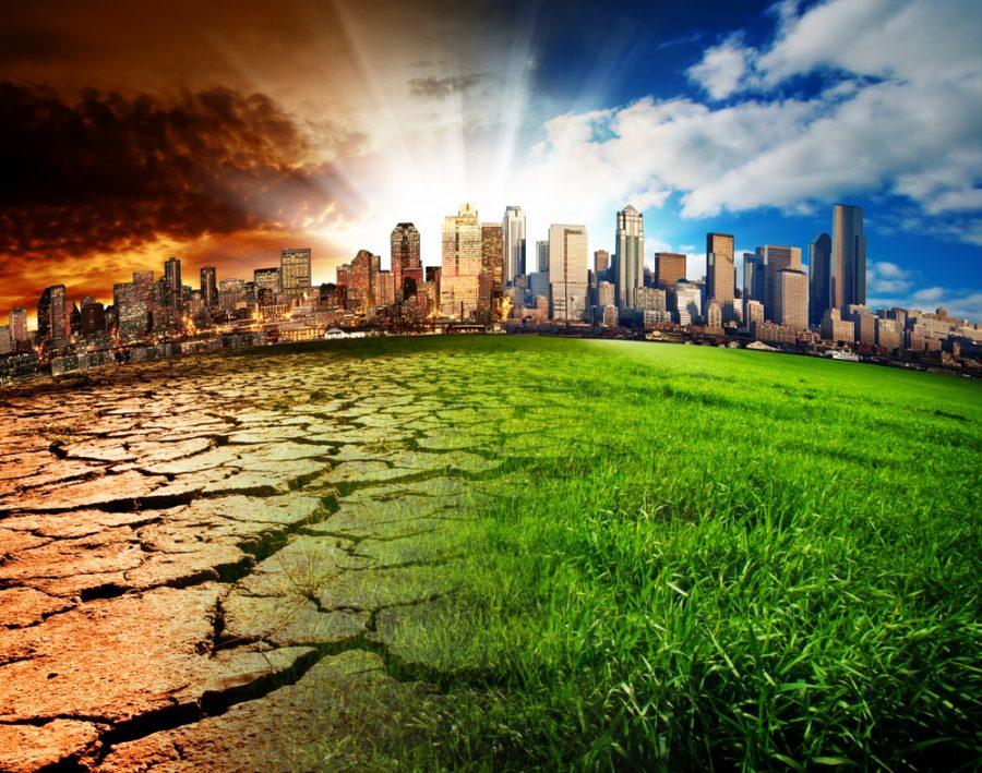 Conoce las razones por las que debemos alertarnos acerca del descuido del medio ambiente