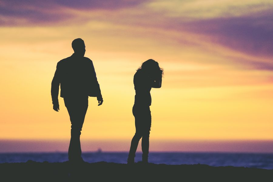 Amor y enamoramiento nuestra realidad cerebral