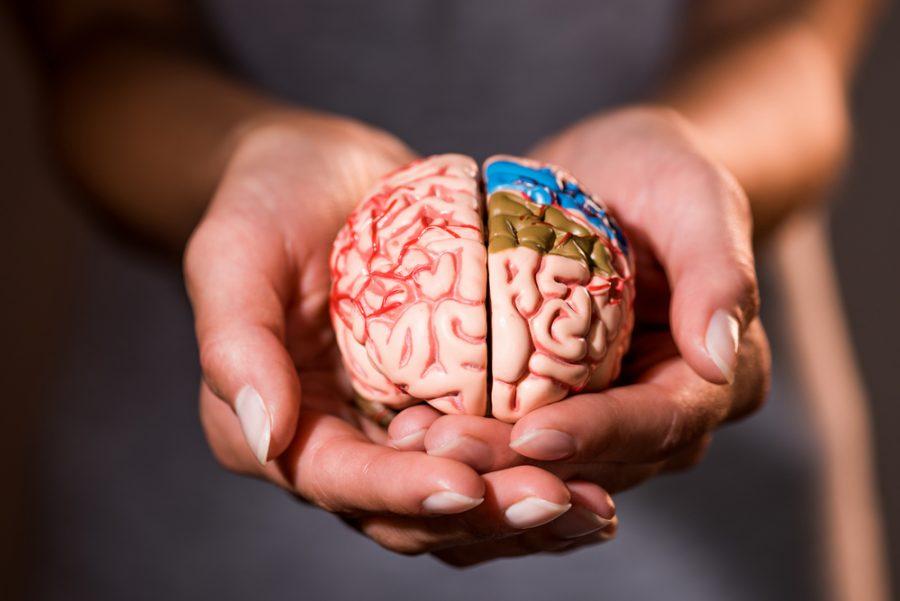 Rejuvenece tu cerebro con estos 8 tips