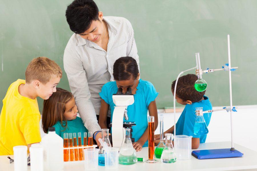Los pequeños científicos