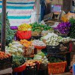 alimentacion-organica-salud