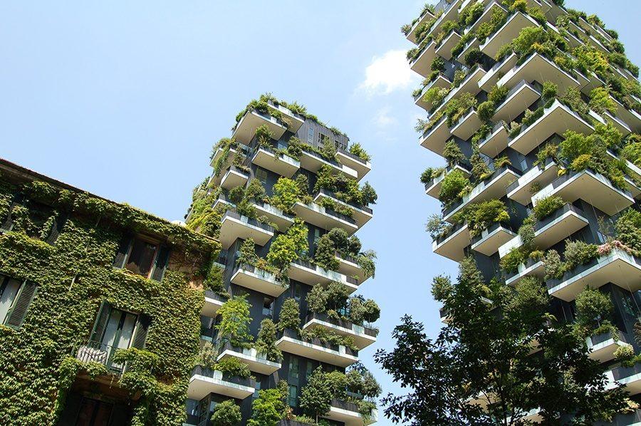edificios-verdes-ecologia-medio-ambiente-phronesis